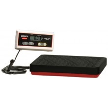 4040-88 Straight Weigh Floor Scale