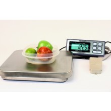 PIZA-25 Bench Scale