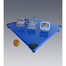 """Stainless Floor Scale 4' x 4' x 4.2""""(H) 5000lbs"""